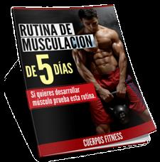 rutina_musculacion_reporte_mini